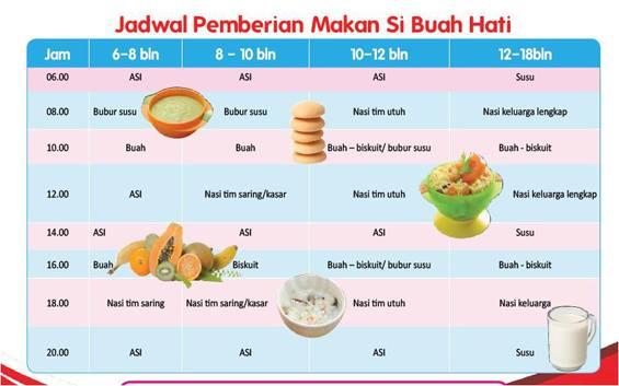 jadwal pemberian makan bayi